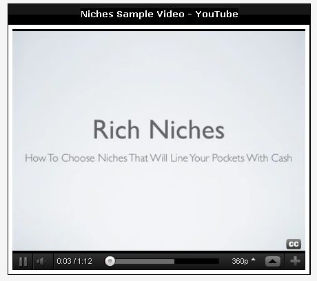 Private Label Rights To Niche Marketing Videos