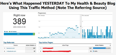 viral-traffic-case-study