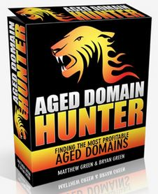 aged-domain-hunter-wsoinsiders