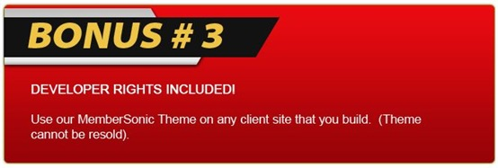 member sonice wp theme bonus three