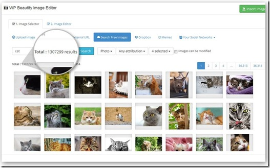 wp beautify image search
