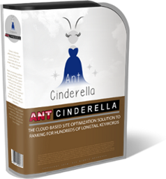cindy-box005-5